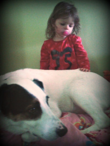toddler and dog, dog, toddler, children and dogs, dogs